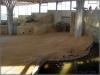 29.1.2006 Blick im Elefantenhaus nach rechts