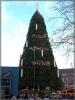 Der größte Weihnachtsbaum der Welt steht jedes Jahr in Dortmund.