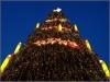Über 40.000 Lämpchen erhellen den Baum am Abend.
